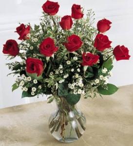 1 Dozen Arranged Long Stem Red Roses
