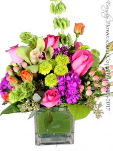 Sherbet Blossoms