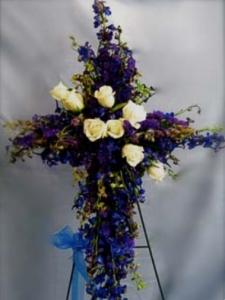 Delphinium Cross