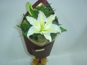 Lovely Fragrant Lily