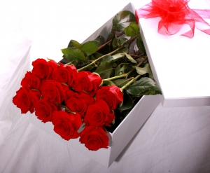 12 Red Rose Presentation Box