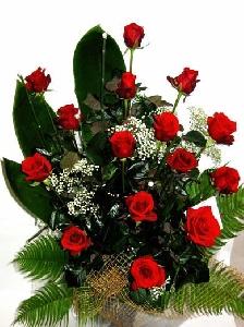 12 Short Stem Roses