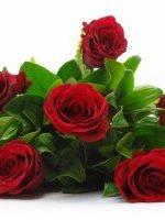 Half Dozen Bouquet