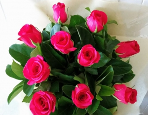 Just Pink Roses