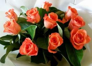 Just Orange Roses
