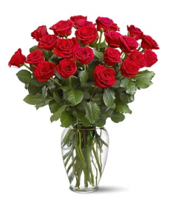 24 Red Roses Vased #TF312