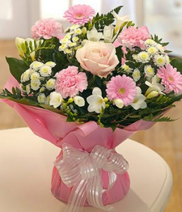 Lovely Soft Flowers