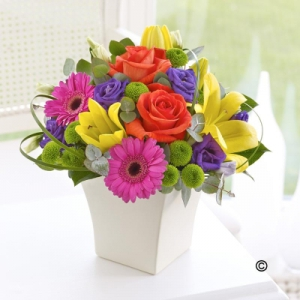 Vibrant Exquisite Arrange