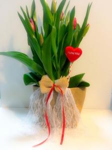 Tulip Jute Bag