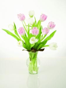 Tulips-pastel
