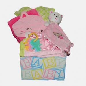Modern Baby Girl Kit
