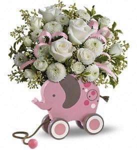 MiGi Baby Elephant - Pink