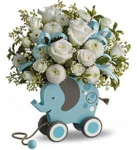 MiGi Baby Elephant - Blue