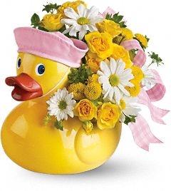 Sailor Duck - Girl