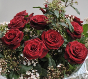 Bouquet Of 100 Red Roses