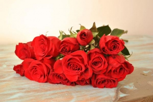Roses Red X6 Stems