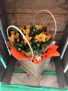 Chrysanth Gift Bag
