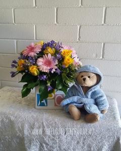 ABC With Teddy