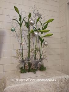 Modern Christmas Lilies