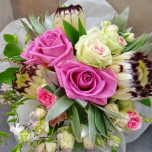 Proteas And Roses