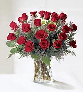 3 Dozen Long Stem Red Roses
