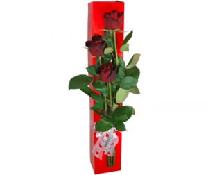 3 Red Roses In A Box