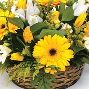 Florist Choice Basket