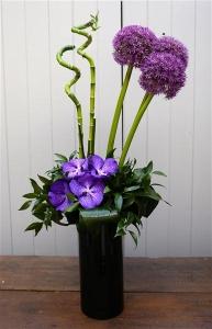 Allium And Vanda Orchid