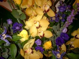 Purple & Yellow Display