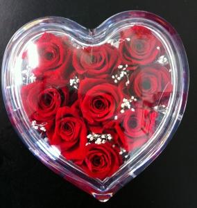 Preserved Heart 9