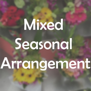 Seasonal Mixed Arrangemen