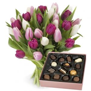 Go Dutch Tulips