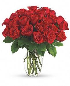 11 Classic Roses