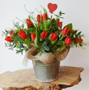 Bucket Load Of Love