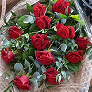 Order Long Stemmed Roses flowers