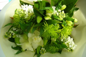 Timeless Green And White