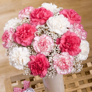 Vase Of Mixed Carnations