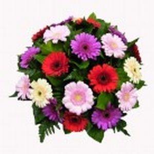 Gerbera Bouquet Pastel