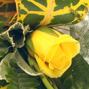 Simple Yellow Rose Sheaf