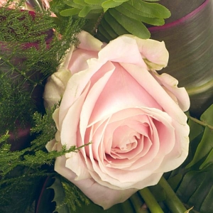 Simple Pink Rose Sheaf