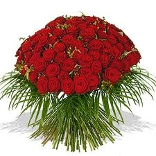 VIP 50 Luxuary Red Roses