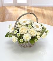 White & Green Basket