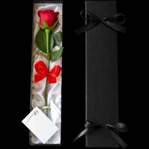 One Love Valentines Day