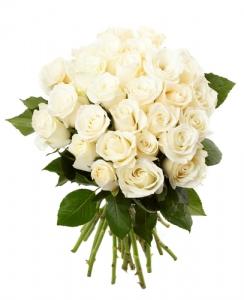 IT12 - Cream Roses