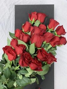 Rose Indulgence