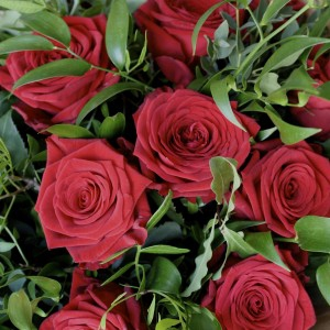 Lux 12 Red Rose Hand-Tied