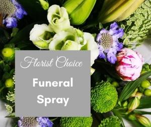 Florist Choice Spray