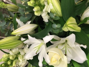 Rose And Lily Whites