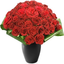 4 Dozen Red Roses
