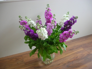 English Stock Bouquet